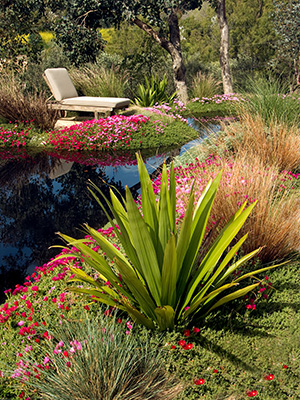 Simple Ways To Make Your Landscape Eco Friendly From Your Los Angeles Landscape Architect